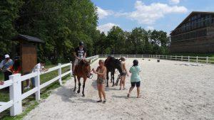 We mogen ook zelf even op de paarden