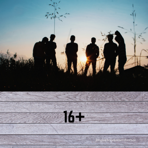 Groep jongeren in silhouet met opschrift 16+